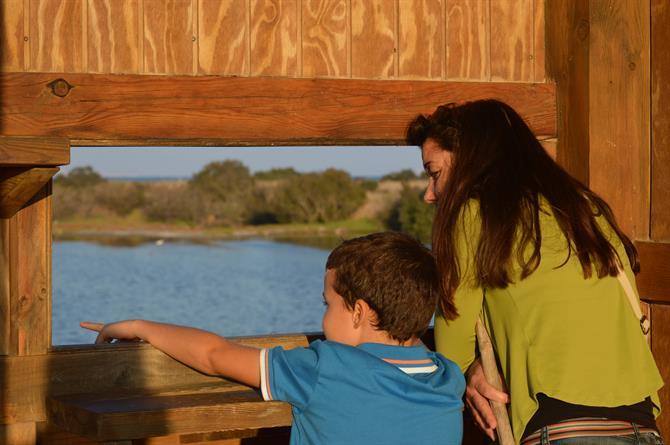 наблюдение за птицами в испании с детьми, рядом с малага