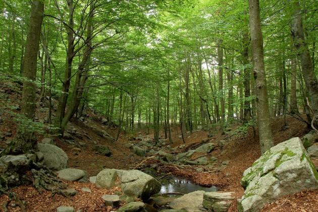 национальные парки испании